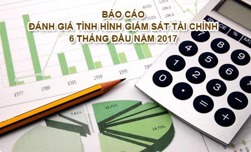 Báo cáo đánh giá tình hình giám sát tài chính 6 tháng đầu năm 2017